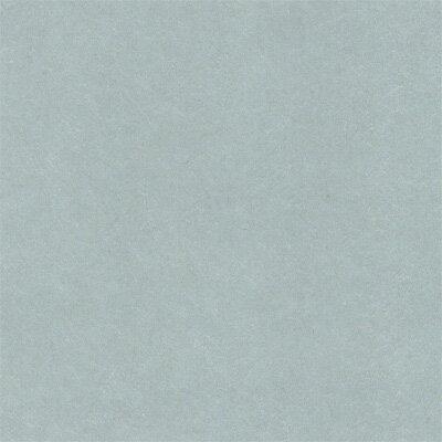 無地 ふすま紙 お値打ち襖紙 T-2041 襖...の紹介画像2