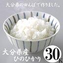 (送料無料) 大分県産 ひのひかり 30kg【白米・玄米をご選択下さい】