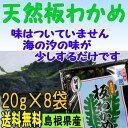 【送料無料】島根県の特産【お土産】天然板わかめ8袋セット【若布】【めのは】【RCP】