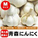 青森にんにく 新物 訳あり Mサイズ 500g 福地ホワイト六片種 新物 30年度産