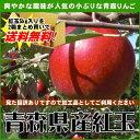 【ご予約品】2箱購入で送料無料『青森県産りんご紅玉(こうぎょく)訳あり品』約5kg[※その他商品と同梱不可]