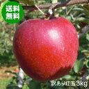 【送料無料】青森県産りんご紅玉加工用訳あり品約3kg[バラ入り・さび・黒ほし・色むら・枝傷有・輸送時