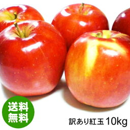 【<strong>送料無料</strong>】青森県産<strong>りんご</strong>紅玉加工用訳あり品約<strong>10kg</strong>[バラ入り・さび・黒ほし・色むら・枝傷有・輸送時の押し傷有]令和元年産