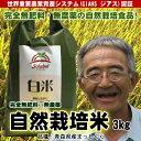 無肥料無農薬米まっしぐら白米3kg(平成29年度産・青森県産...
