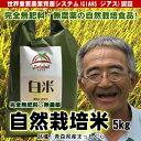 無肥料無農薬米まっしぐら白米5kg(平成29年度産・青森県産...
