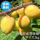 青森県産ほぼ完熟豊後梅 Lサイズ 2kg【クール冷蔵便送料無料】