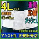 腰痛ベルト 骨盤ベルト 涼しい(通気性あり) 大きいサイズ ぎっくり腰 ギックリ腰 日本製 国産 腰サポーター