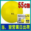 エアロビックボール ストレッチボール 55cm バランスボール【一流工場生産のライテック社(M-net)(エムネット)(LITEC)】【アンチバースト製】【バーストレスタイプ】DP070MN120