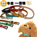 【首輪】名入れ無料 革 首輪 手染めカラフル本牛革+超小型〜小型犬用+【RCP】