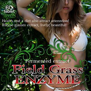 ◆送料無料◆[ フィールドグラスエンザイム -Field Grass ENZYME- 60粒 ][3個セット]( 酵素 サプリ ダイエット サプリメント キャンドルブッシュ フィールドグラスエンザイム 口コミ 楽天 通販)