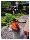 ◆◆猫カフェめぐり 旅情篇 あの猫に会いに旅 / 逸見 チエコ / KADOKAWA(エンターブレイン)