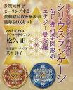 ◆◆シリウスランゲージ DNAを書きかえる超波動 色と幾何学図形のエナジー曼荼羅 / 松久正/著 茶谷洋子/著 / ヒカルランド