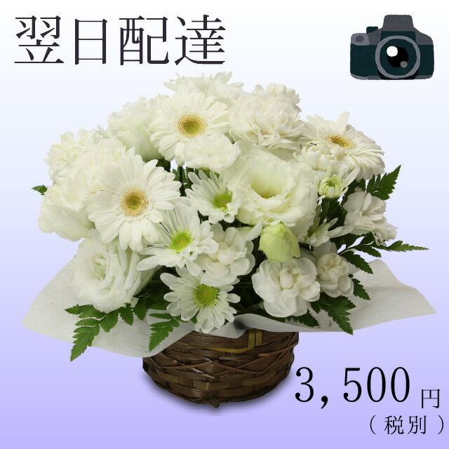 お供え お悔やみ 法事 ご葬儀 花 おまかせアレンジメント 3000円台 お供え花 葬式 …...:webflora:10000155
