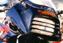 PLEASURE プレジャー その他外装関連パーツ ヘッドライトルーバー カラー:レッド GPZ900R