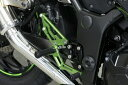 TRICK STAR トリックスター ドレスアップキット イニシャルアジャスターカラー:グリーン×ブラック バックステップカラー:グリーン×ブラック NINJA250