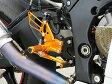 BABYFACE ベビーフェイス バックステップ レースステップキット カラー:シルバー ZX10R (16-)
