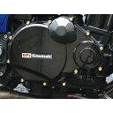 CF POSH CF ポッシュ エンジンカバー 24Kメッキステンレスパルサーカバーネジセット ZRX1100 ZRX1200DAEG [ダエグ] ZRX1200R ZRX1200S