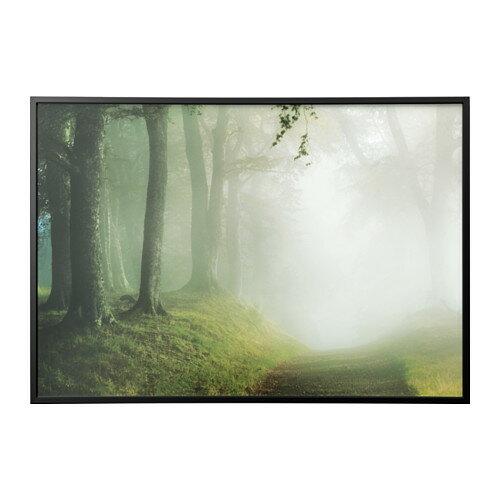 【IKEA/イケア/通販】 BJÖRKSTA アート フレーム付き, 森の小道, ブラック(a)(S89178047)