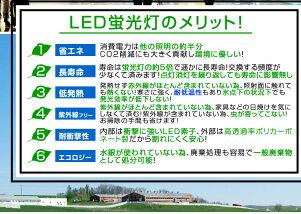 LED�ָ���40Wľ��120cm1654LMT8���������/����/�ʥ���/�����Ⱥ︺/������������̵����LED�ָ���ľ�ɷָ���ľ��LED�ָ���40W��40��40��ŷ��������ե��������������Ź�����ޤȤ��A14C4