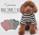ベーシック ストライプ Tシャツ ポメラニアン マルチーズ トイプードル ドッグウェア