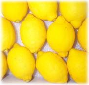 ★【倉庫受注不可品】レモン1個/Mサイズ