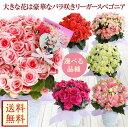 母の日 花 ギフト 鉢植え 大輪薔薇咲き リーガースベゴニア ボリアス等 選べる品種 籠付きラッピン