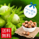 収穫を楽しめる!鉢植えギフト ヘーゼルナッツ選べる5種 Hazelnuts 鉢植え 果樹 父 男性 ギフト 誕生日 プレゼント ナッツ おつまみ 送料無料:一部地域を除き