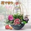【花ギフト】桃の節句 花でまり 和風 寄せ植え 8号鉢