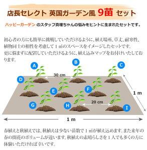http://image.rakuten.co.jp/wfgarden/cabinet/mailmaga/mlmg-english9_201606.jpg