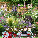 楽天1位 イングリッシュガーデン を作ろう9鉢 花苗セット 1メートル四方植え込む用 花苗 セット