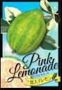 斑入り葉!しま模様 レモンの木 ピンクレモネード5号1鉢 Pink Lemonade【果樹 木 珍しい レモン】【ゆうパックでお届け】