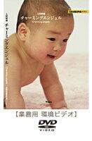 DVDチャーミングエンジェル(17分)