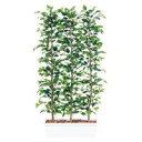 空間を装飾するスタイリッシュなオブジェ。【その他B】【その他インテリア】96358 TOKA人工樹木 フィッカスベンジャミナパーテーション ガーデンペット