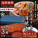 【国産 手焼き 炭火焼】170g前後3尾 国産うなぎ蒲焼き...
