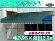 【送料無料・代引き不可】手動オーニングテント(幅3.95m×張出2.5m)グリーン【smtb-s】