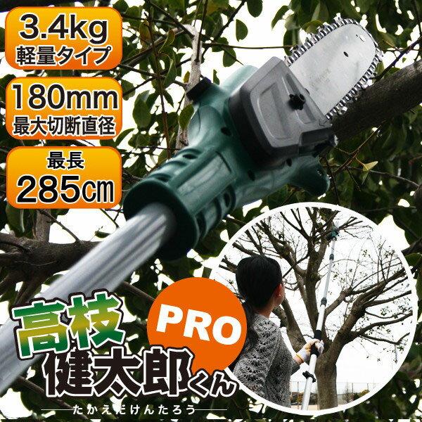 充電式コードレス電動高枝切りチェーンソー 高枝健太郎くんPRO(YSGT-0513)