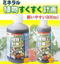 【在庫処分】ミネラル植物すくすく計画 300ml(epo8002910)
