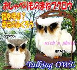 Talking OWL(福を呼ぶ?幸せのおしゃべりふくろう)