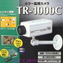 侵入・防犯対策に簡単接続カラー監視カメラ(TR-1000C)