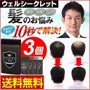 【メール便送料無料】 日本製 薄毛隠し 薄毛 ハゲ隠し はげ...