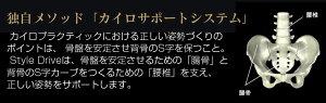 ����̵���������ʥ�������ɥ饤��mtgStyleDrive��MTG��������Ź��style�ܥǥ��ᥤ��������style������������ػҥ�������BS-SD2029F-N���������å������������Х���������ɥ饤�ֹ����к��������ѱ�ž