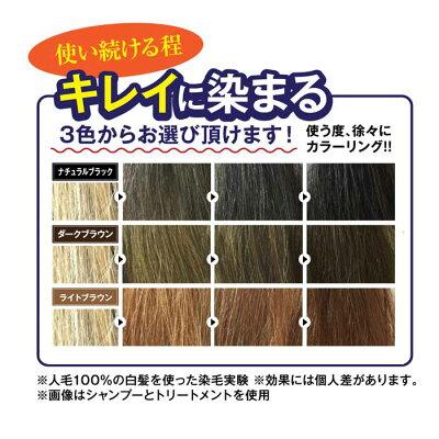 利尻昆布エキス配合昆布の白髪用カラーシャンプー2本セットシャンプー利尻白髪染めカラーシャンプー染める39種類植物エキス配合大容量10%増量リアライズ9218ナチュラルブラックダークブラウンライトブラウンセット