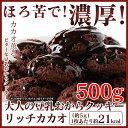 豆乳おからクッキー 500g おいしい リッチカカオ 訳あり お試し おからクッキー チョコ オカラクッキー ダイエット食品 豆乳 クッキー ..