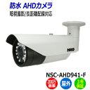 NSS 防犯カメラ NSC-AHD941-F 屋外 200万画素 業務用 暗視 防水 IP67 フル...