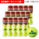 ダンロップ [DUNLOP] テニスボール St. ジェームス 1箱(1缶4球入/15缶/60球※5ダース)※2015年12月発売