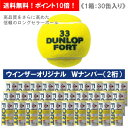 【ウインザーオリジナル】ダンロップ [DUNLOP] フォート1箱(1缶2球入/30缶/60球※5ダー