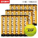 ヘッド [HEAD] テニスボール HEAD ATP 1箱(1缶4球入/18缶/72球※6ダース)