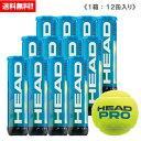 ヘッド [HEAD] テニスボール HEAD PRO 1箱(1缶4球入/12缶/48球※4ダース)