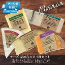 チーズ おつまみ 詰め合わせ セット お得 送料無料 ワインに合う 5種セット ブリー ゴルゴンゾーラ ゴーダトリュフ ミモレット