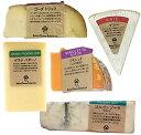 チーズ おつまみ 詰め合わせ セット お得 ワインに合う 5種セット ブリー ゴルゴンゾーラ ゴーダトリュフ ミモレット